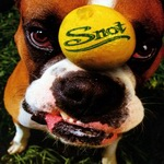 """Snot - """"Get Some"""""""