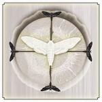 """White Moth - """"White Moth"""""""