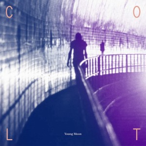 Young Moon - Colt