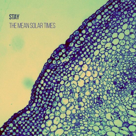 "Stay - ""The Mean Solar Times"""