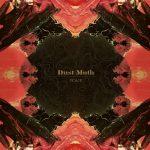 "Dust Moth - ""Scale"""